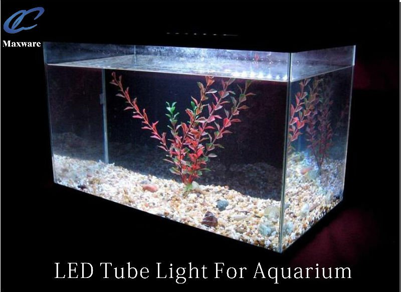 Submersible color changing IP68 fishing light/led aquarium light