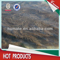 Eco-friendly 18% Alginic Acid Seaweed Extract