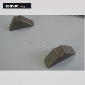 customize Special shape neodymium magnet for sale