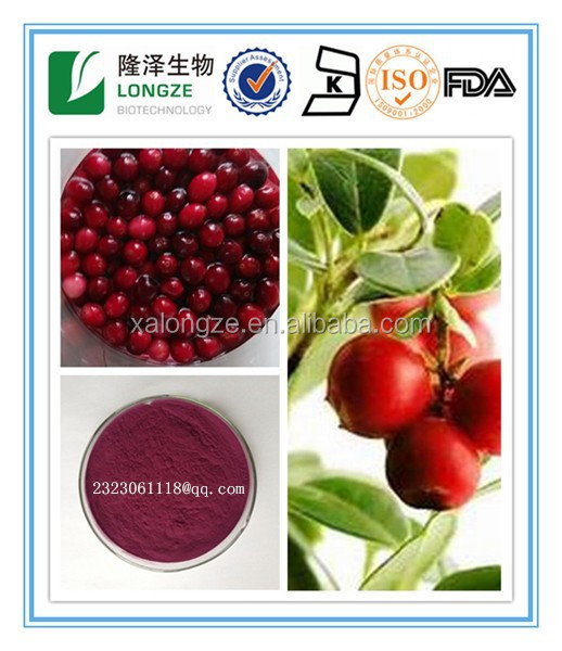 100% Herbal Extract Type and Antioxidant Function of natural pigment blueberry bilberry cranberry With Berry extract powder