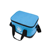 Fashion Two-layer Non Woven Insulated Lunch Cooler Bag