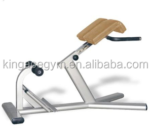 Commercial Roman Chair/Gym Equipment