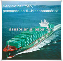 container sea freight from china to argentina