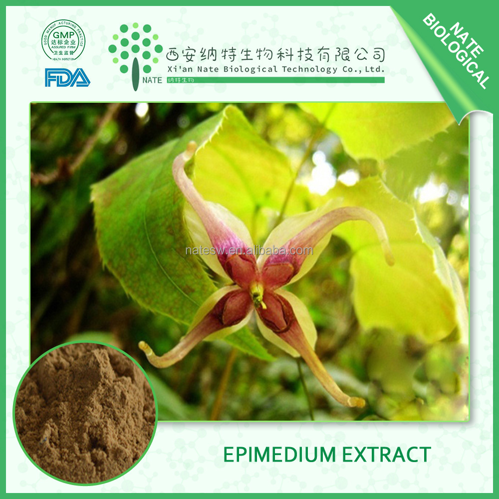 hot sell products natural epimedium extract 80% icariin powder by HPLC Epinedoside A