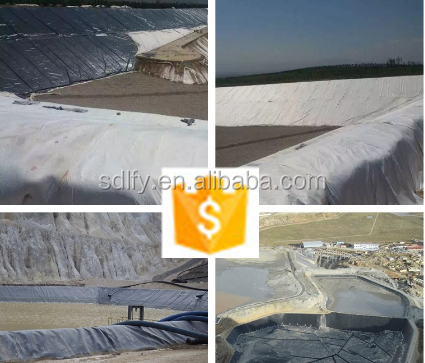 trade assurance Hot sale and Top quality High Density Polyethylene (HDPE) Geomembranes and Liners