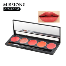 China supplier magenta pigment lipstick palette long stay stain lip kit