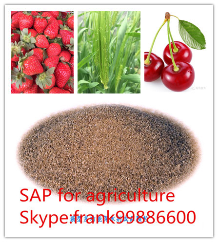 Top MANUFACTURER Potassium based super absorbent polymer for agriculture manufacturer in china since year 1997