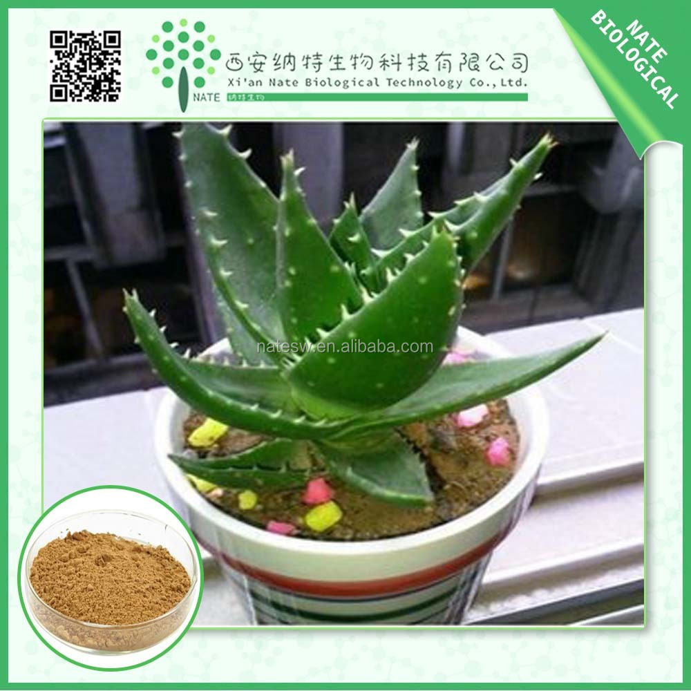 Free Sample Aloe Vera Extract 4:1