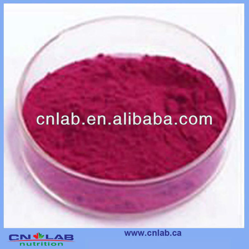 High Quality Cert Red Cabbage Juice Powder For sale