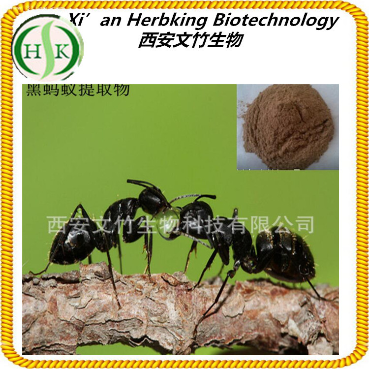 natural high quality sex for men black ant powder