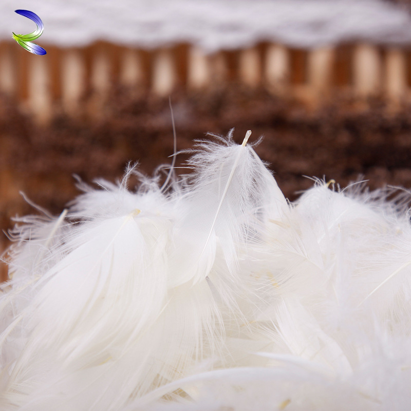 Durable nature washed white goose feather from china