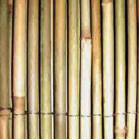 BAMBOO FENCE Java Natural
