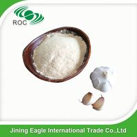 premium quality vegetable spice dried garlic powder factory