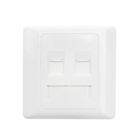 White Network rj45 indoor 2 port face plate