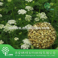 100% natural Pure Fructus Cnidii Extract /Cnidium Fruit Extract/ Osthole 98%