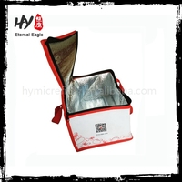 Brand new kids nonwoven cooler bag made in China