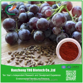 Factory supply Grape Seed Extract with CE certificate