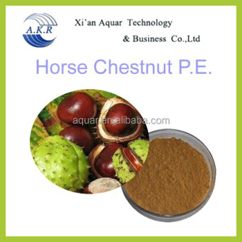 100% natural plant extract Horse Chestnut seed P.E.