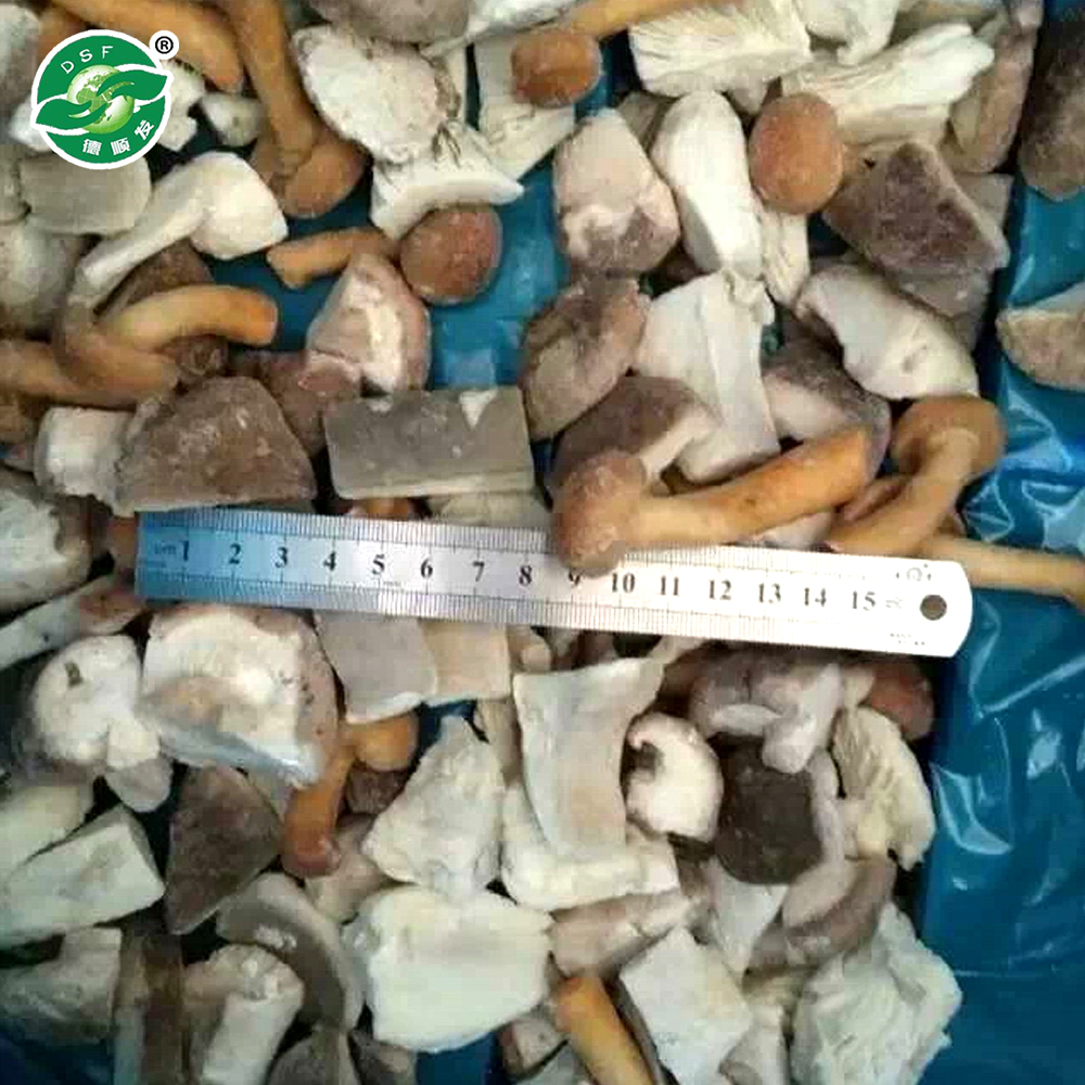 Advanced equipment hot selling chinese frozen mixed mushrooms price