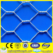 anping hexagonal wire mesh /hexagonal chicken wire mesh