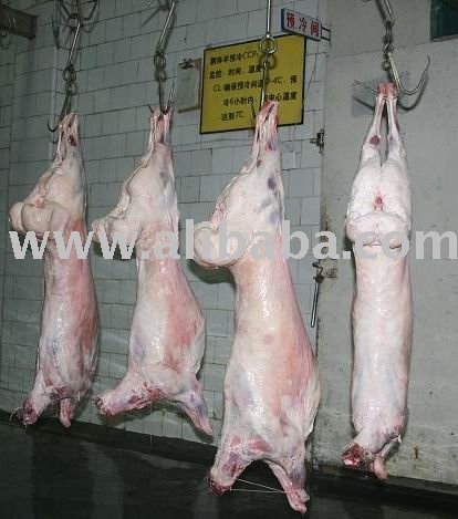 Lamb Carcass / Six Cuts / Four Cuts / Legs