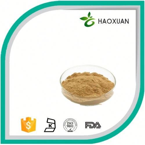 2017 hot sale Natural Ginkgo flavone glycosides terpene lactones