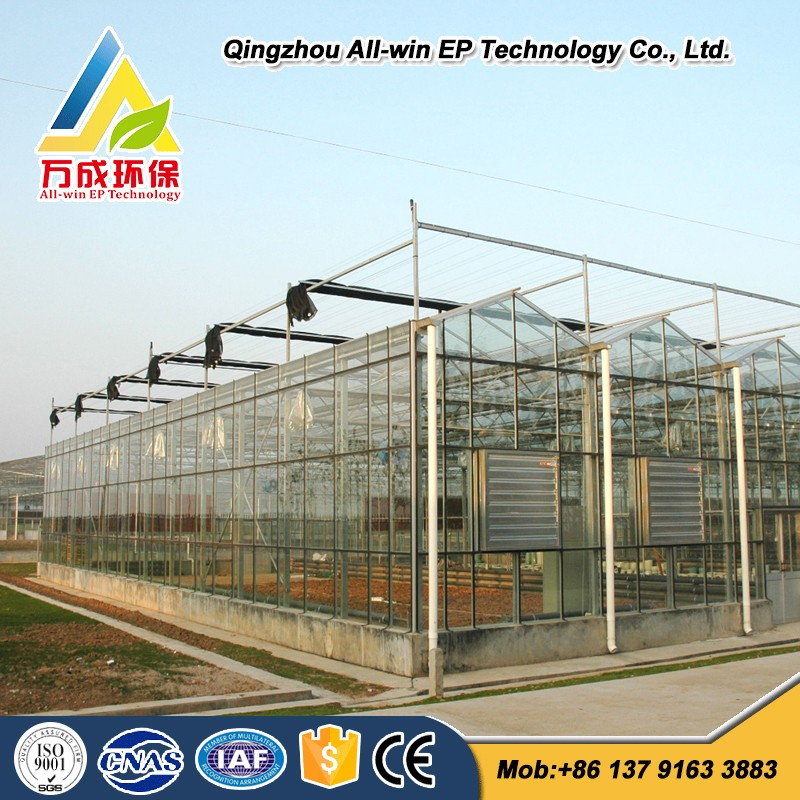 Advanced glass Greenhouse for vegetable and flower gardening