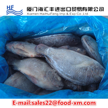 live freshwater fish tilapia fish factory low price
