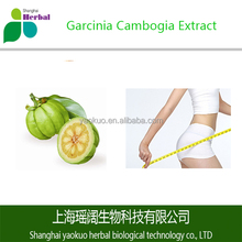 Organic Weight Loss Garcinia Cambogia Fruit Extract Powder