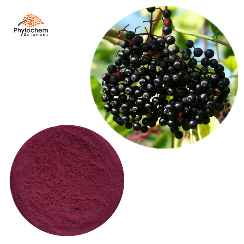 Anthocyanins fruit juice powder pigment 100% natural elderberry extract