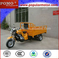 Hot Selling China 2013 Gasoline New Popular Cargo Three Wheel Motorcycle Trike