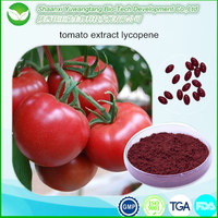 Non-GMO high quality Natural Tomato Extract
