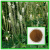 Wholesale and Export Black Cohosh P.E.Supplier