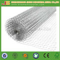 Professional Factory 1x1 inch Galvanized Welded Wire Mesh