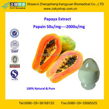 GMP Factory Supply Natural and High Quality Papain
