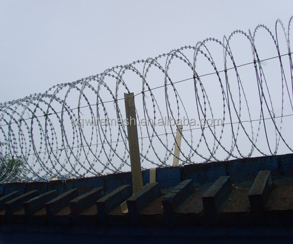 razor blade/wire fencing/barbed wire