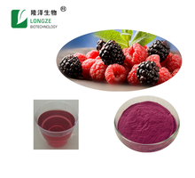 100% Natural Fruit and Vegetable Powder Manufacturer Spray-dried Mulberry Fruit Powder