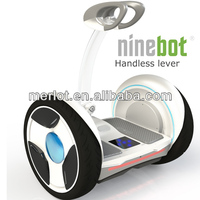 NEW Ninebot 2 wheel standing adult and kids snow scooter