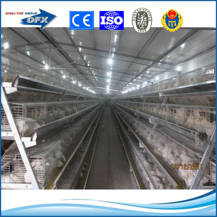 Low cost Prefabricated steel structural industrial modern broiler farm