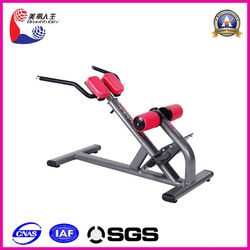 cheap price high quality sports equipment/gym equipment back extension