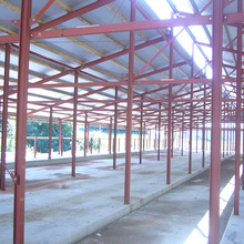 Low cost steel structure farm design prefabricated pig shed chicken poultry house