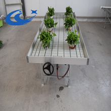 Rolling Hydroponic System Ebb And Flow Benches/Table including Different Plastic Tray