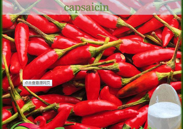 100% pure and natural capsaicin powder annuum extract /synthetic capsaicin