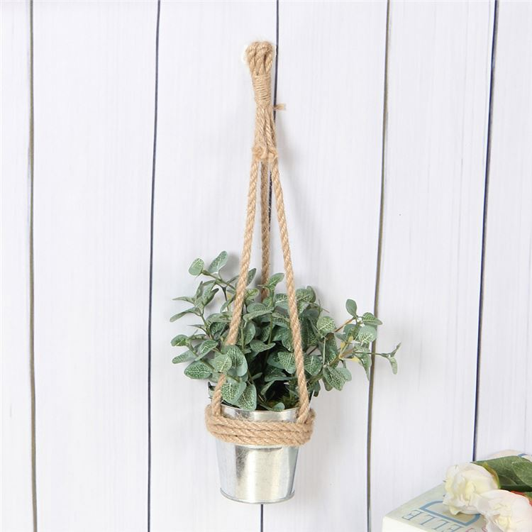 Best selling simple design hanging Longhairy Antenoron Herb pot green plants potted
