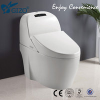 Hot End Water Closet / Luxury Western Siphonic One-piece Toilet