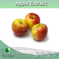 high qualtity proanthocyanidins B2,apple extract, apple peel extract