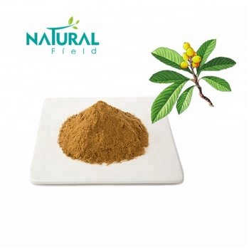 Natural Corosolic Acid 20% from Loquat Leaf Extract for Health Supplement