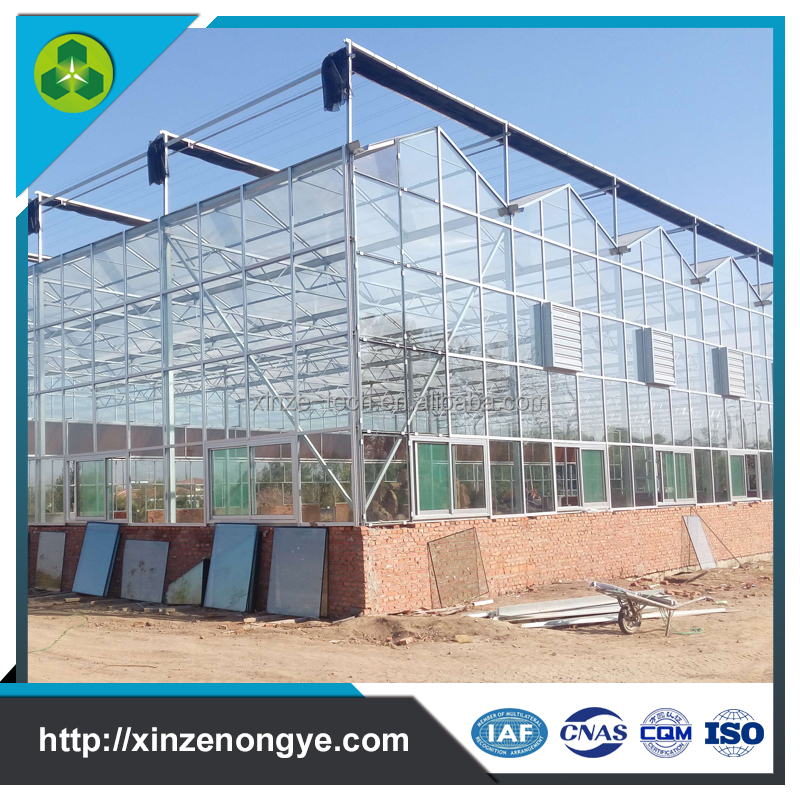 Best choice modular winter greenhouse glasshouse