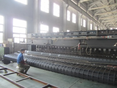 Geogrid Processing