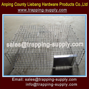 Eco-friendly Routeway Red Squirrel Trap Cage For Hunting China Best Selling Supplier